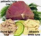 Eating Tuna When Pregnant: Is It Safe?